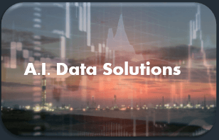 A.I. Capital Efficient Solutions