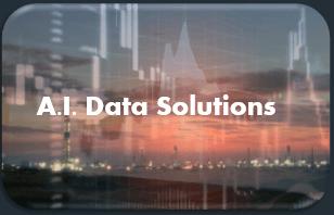 A.I. Capital Efficient Solutions